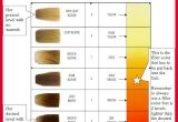 Awesome Hair Color Filler Pics Of Hair Color Tutorials_5ca31df136ba4.jpeg