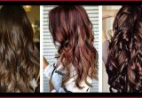 Beautiful Different Types Of Hair Colors Collection Of Hair Color Trends_5ca2746a4fdbc.jpeg