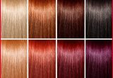 Beautiful Different Types Of Hair Colors Collection Of Hair Color Trends_5ca2746bc6ce9.jpeg