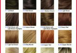 Beautiful Different Types Of Hair Colors Collection Of Hair Color Trends_5ca2746c2c0be.jpeg