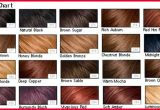 Beautiful Different Types Of Hair Colors Collection Of Hair Color Trends_5ca2746d3ea82.jpeg