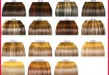 Beautiful Different Types Of Hair Colors Collection Of Hair Color Trends_5ca336d1f2b42.jpeg