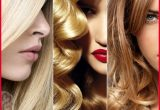 Beautiful Different Types Of Hair Colors Collection Of Hair Color Trends_5ca336d249869.jpeg