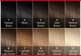 Best Color Lifting Hair Dye Image Of Hair Color Trends_5ca500b4f3c02.jpeg