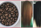 Elegant Color Gray Hair with Coffee Collection Of Hair Color Ideas_5ca50115529d9.jpeg