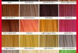 Fresh Braiding Hair Color Chart Pics Of Hair Color Trends_5ca232f225dfd.jpeg