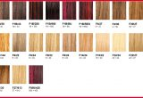 Fresh Braiding Hair Color Chart Pics Of Hair Color Trends_5ca235584a3c6.jpeg