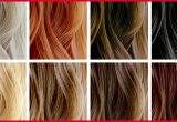 New Best Hair Color for Your Hair Image Of Hair Color Style_5ca257982f0de.jpeg