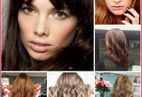 New Best Hair Color for Your Hair Image Of Hair Color Style_5ca25798be896.jpeg