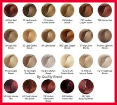 New Ion Permanent Hair Color Chart Pics Of Hair Color