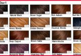 Unique What Hair Color is Right for My Skin tone Image Of Hair Color Tips_5ca26e7de658d.jpeg