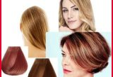 Unique What Hair Color is Right for My Skin tone Image Of Hair Color Tips_5ca3320b1eb68.jpeg